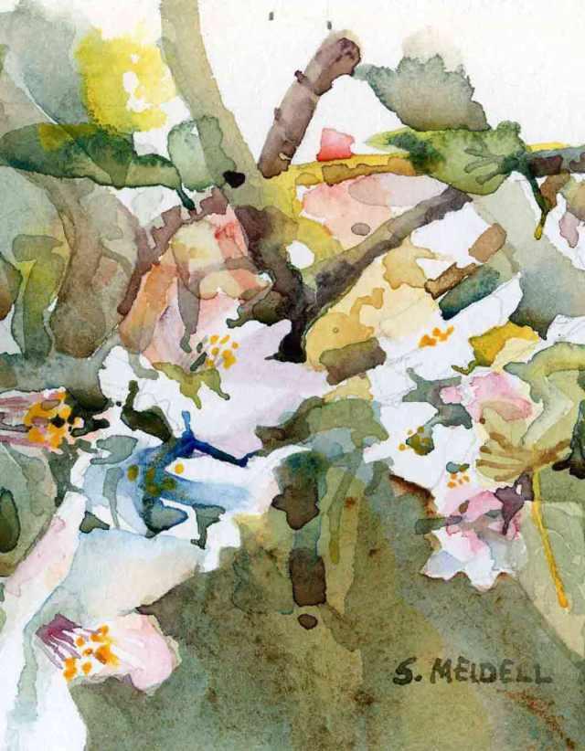 "Apple Blossum 8""x10"" watercolor (sold)"